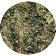 Czosnek staropolski 40g (bez soli)